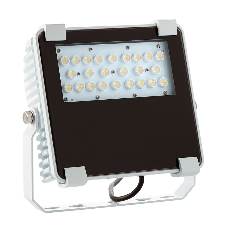 50W Marine LED Flood Light